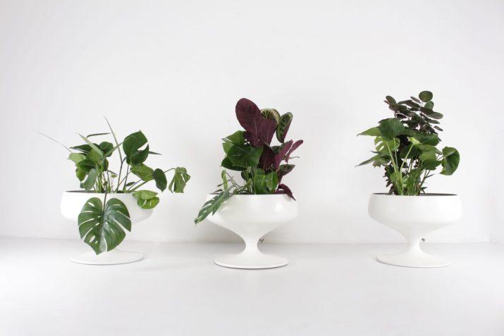 jardinières pour plantes extérieur ou intérieur forme tulipe en aluminium blanc style saarinen vintage liège