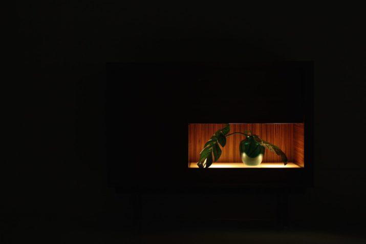 Pieter de bruyne, bar éclairé en zebrano