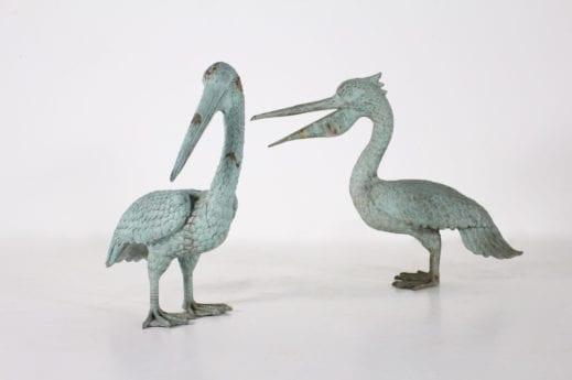 Couple de pelicans